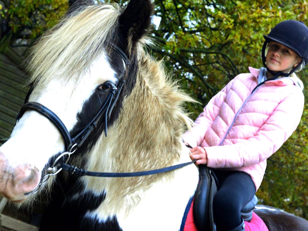 発達障害の子たちが馬と過ごし他人と違っていいことがわかる場所 u1