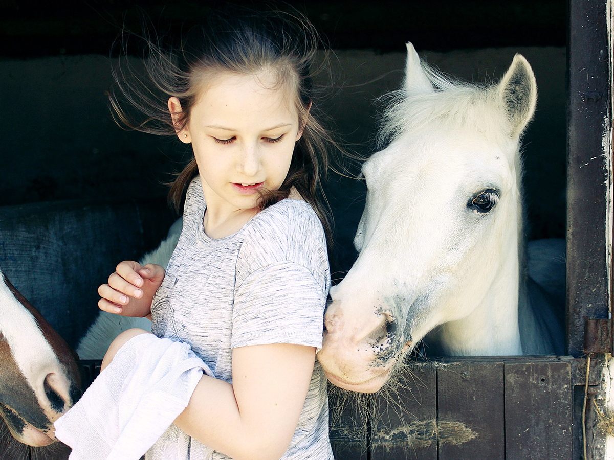 乗馬療法が発達障害の子の器用さ、協調などを改善する研究結果