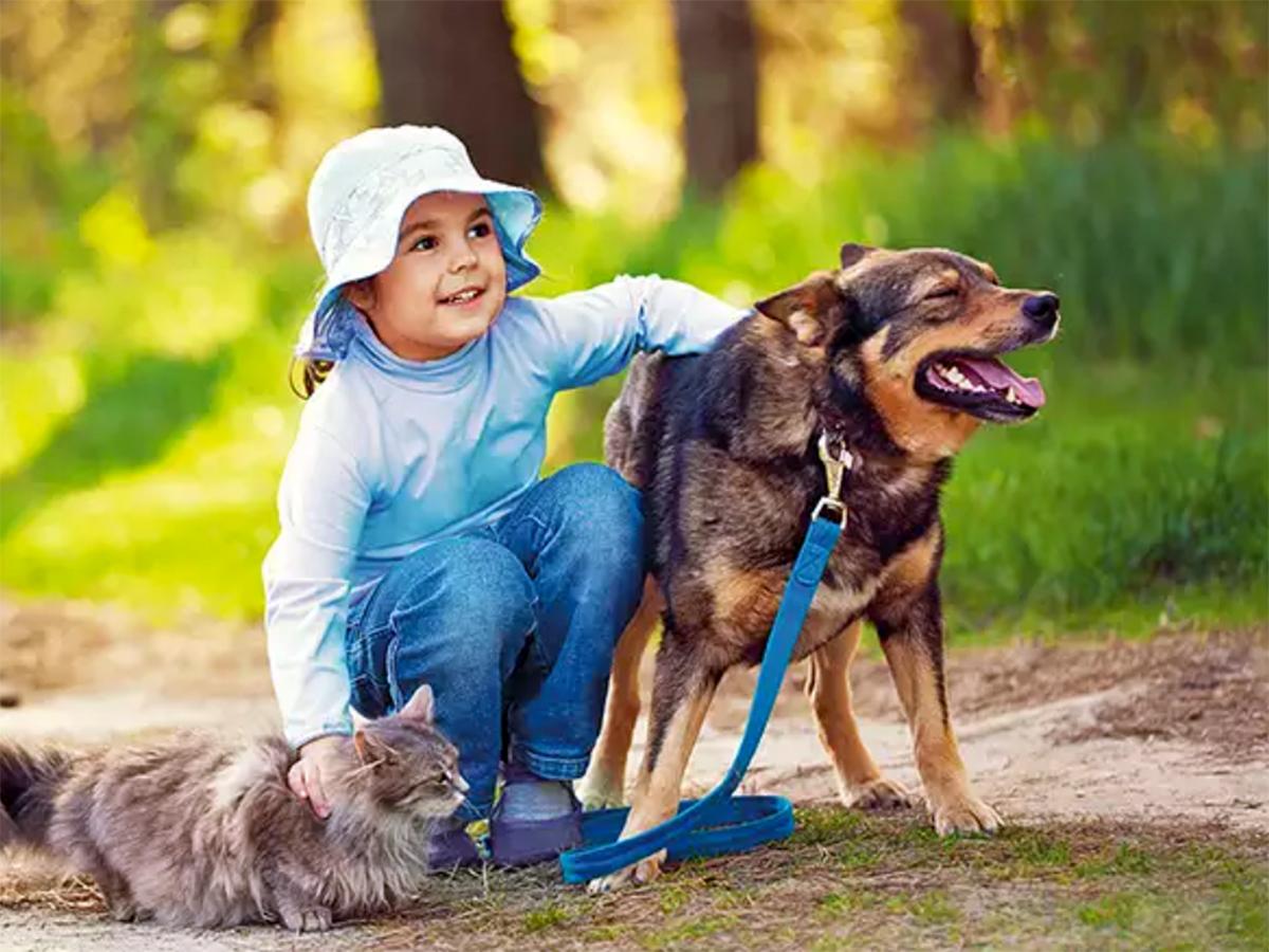 知的障害の人にも役立っているインドで行われている動物支援療法
