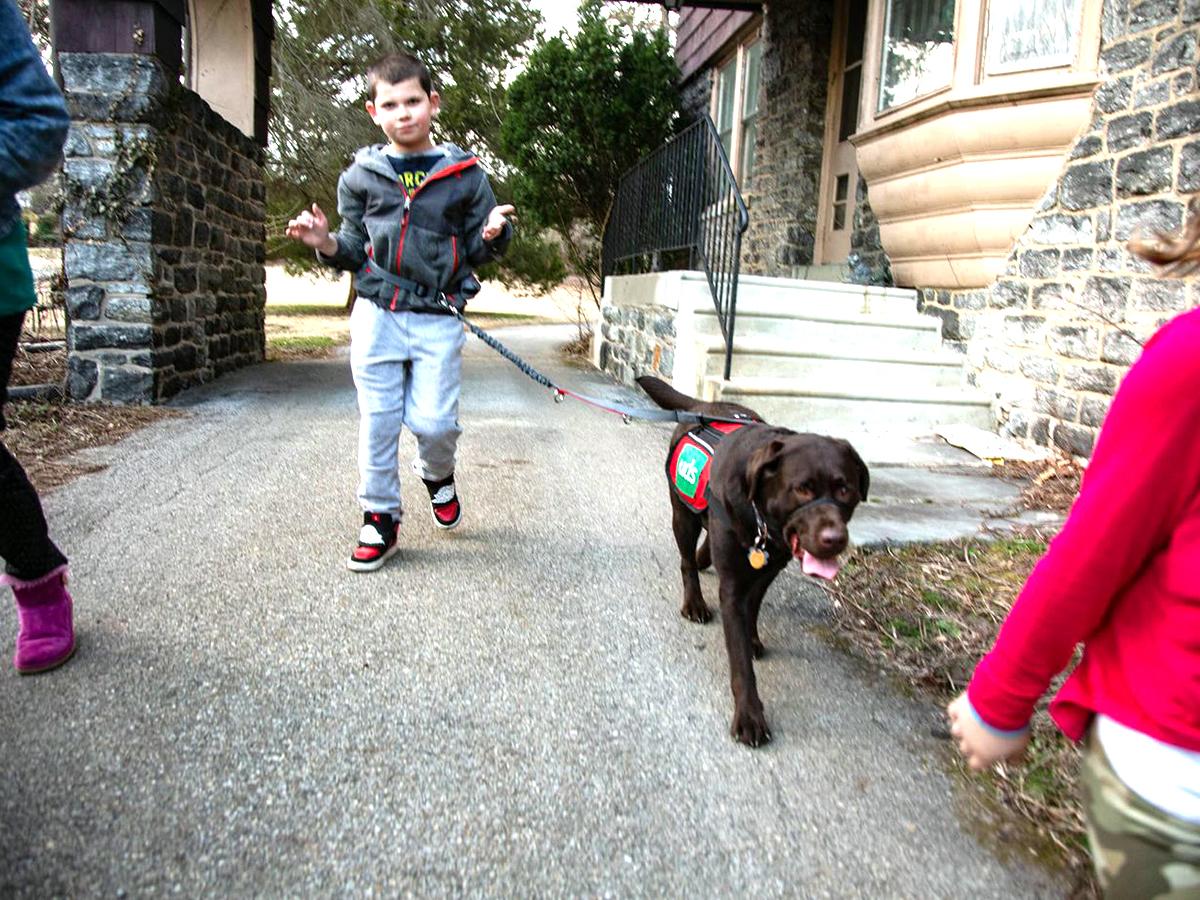 介助犬は介助犬を超えて息子の友人となり世界につなぐ存在に i2